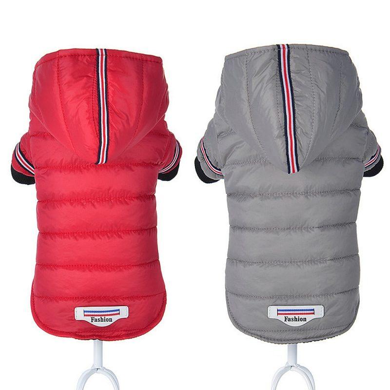 Manteau chien hiver protection contre le froid