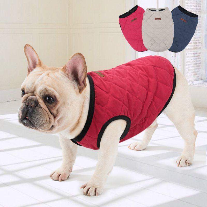 Manteau hiver pour chien Bouledogue français